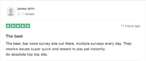 qmee user reviews