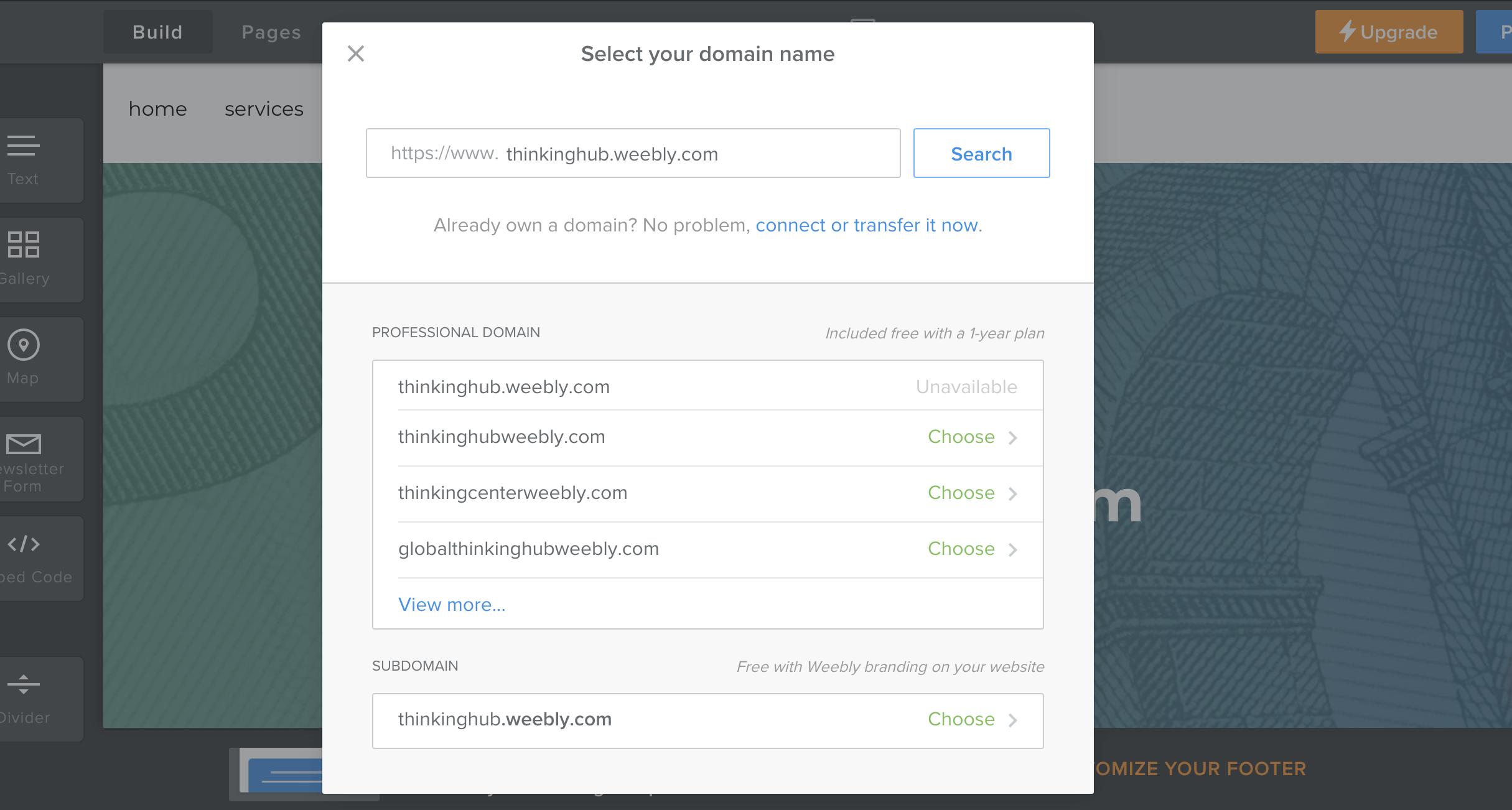 choosing domain options