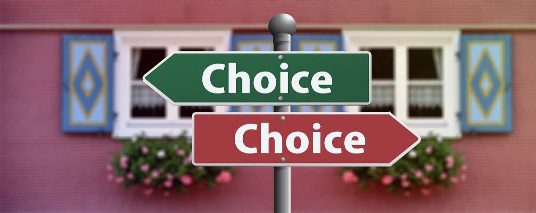 choosing website type and niche